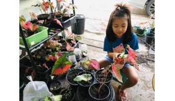learn-from-home-ระดับชั้นอนุบาล-3-ดรุณากาญจนบุรี