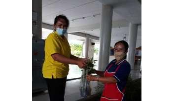 โรงเรียนดรุณากาญจนบุรีแจกต้นฟ้าทะลายโจร